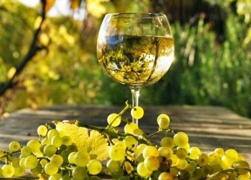 Vino blanco seco: opiniones,precios, compra, selección, variedades…